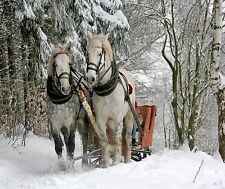 HORSES SLEIGH RIDE COMPUTER MOUSE PAD  9 X 7