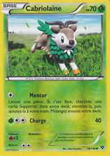 Cabriolaine Reverse - XY - 18/146 - Carte Pokemon Neuve - Française
