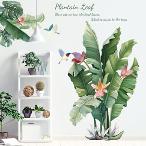 Removable Wall Stickers Exotic Plantain Plants Green Leaves Humming Birds AU