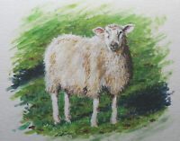 Sheep farm countryside Wales England shepherd animal original acrylic painting