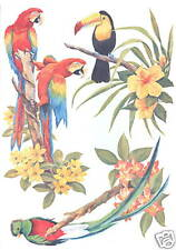 TROPICAL BIRDS WITH FLOWERS CREATIVE WALL ART TRANSFER DECOR WALL ART TATOUAGE