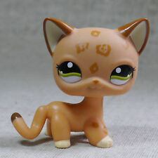 Kahki Spotted Short Hair Cat kitty #1800 Littlest Pet Shop LPS Action Figure