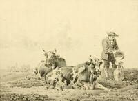 C.STEUERWALD(1802-1874) Milchkühe mit Bauer in niederl. Landschaft, Lithographie