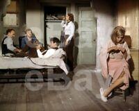 Bonnie and Clyde (1967) Faye Dunaway, Warren Beatty, Gene Hackman 10x8 Photo