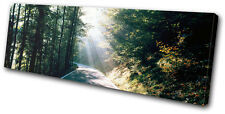Landscapes Forest Road SINGLE DOEK WALL ART foto afdrukken