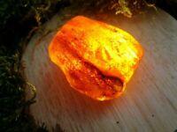 Bernstein natur amber cognac Polen transluzent 42 x 38 x 20 mm roh unbearbeitet