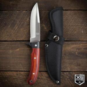 "Buckshot 9"" Survival BUSH CRAFT Hunting RED WOOD Fixed Blade FULL TANG Knife"