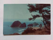 Oregon Vintage colour Postcard c1950 Coast
