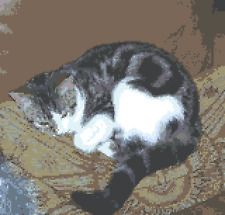 BN original cross stitch  chart  Tabby  and white cat  sleeping  on a cushion 1