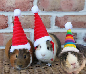 Pet Christmas Hat Rabbit Hamster Guinea Pig Rats Kitten Small Animals Outfit