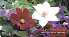 More details for guernsey 2004 raymond evison's clematis presentation pack + 2 stamp booklet