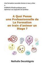 A Quoi Pense une Professionnelle de la Formation en Train d'animer un Stage ?...