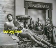 009 REG PARK SEXY GLADIATOR LOUNGING ON STEPS PHOTO