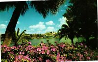 Vintage Postcard  - Azaleas Beside Mirror Lake St. Petersburg Florida FL #1041