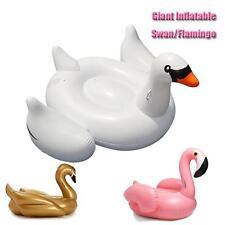 Unbranded Swan Floats & Rafts