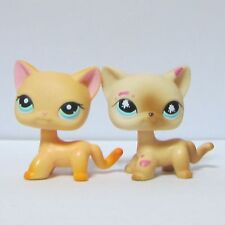 2x Littlest Pet Shop LPS Animal Toy Short Hair Kitty Cat #816 Siamese & #339 Cat