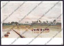 MONDINE 87 MONDARISO RISO RISAIA LAVORI AGRICOLI Pitt STEFFANI Cartolina v. 1940