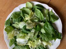 Mixed varieties lettuce seeds, Usa grown, easy to grow food garden, prepared
