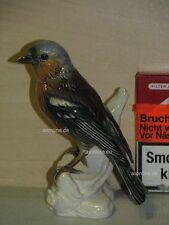 +# A015583_25 Goebel Archiv Muster Vogel Bird Fink Buchfink Chaffinch 38-127