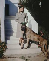 American Actress Brenda Joyce With A Great Dane Circa 1950 OLD PHOTO