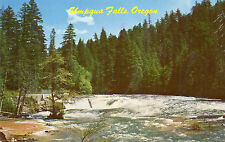 postcard USA  Oregan Umpgua Falls  unposted