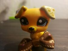 Littlest Pet Shop Lps #1496 Blue Eye Jack Russell Terrier Puggy Dog Figure Toy A