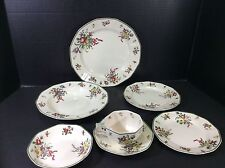 BEAUTIFUL ANTIQUE ROYAL DOULTON ENGLAND 7 PIECE PLACE SETTING-OLD LEEDS SPRAYS