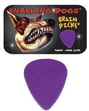 Snarling Dogs Brain Guitar Picks Purple  .60mm 12 picks in Tin Box