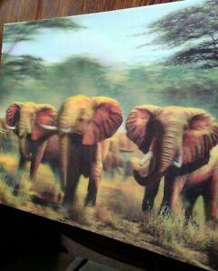 3 D Hologram Elephant Picture