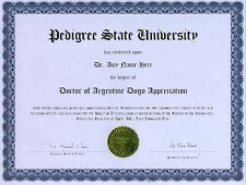 Doctor Argentine Dogo Novelty Diploma Puppy Dog Lover