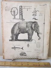 Vintage Print,ELECTRICAL MACHINE,Dictionary Arts+Science,1771