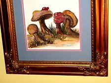 Original LOIS PULLIG COLLECTION W/C Painting Mushrooms Butterfly Ladybug VINTAGE