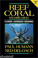 Divers Guide Reef Coral Id Tropical Florida Caribbean Scuba Book glossy paper