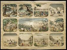 Rare 1853ca - L'Amérique - Planche encyclopédique, scolaire, affiche, estampe