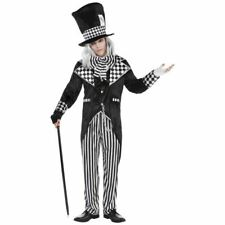Totally Mad Hatter Costume Adult Mens Standard Halloween Fancy Dress