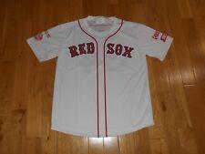 New DAVID ORTIZ White BOSTON RED SOX AAA PAWSOX SGA Promo Team JERSEY XL