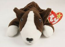 e4131664613 TY BRUNO 1997 from The Beanie Babies Collection