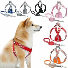Small Medium Large Dog Harness Lead Breathable Reflective Vest Adjustable XS-L