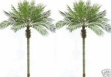 2 Artificial 8 Foot Phoenix Palm Trees Plant Date Pool Patio Sago Bamboo Fake 8'