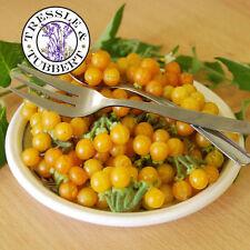 Rara De Oro Perlas, pariente cercano a la base de tomate - 10 Semillas-Reino Unido Vendedor