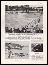 Doc.Ancien  Les requins en Australie Sharks in Australia Sydney  1933