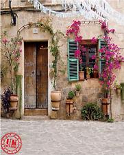Puerta de casa de la provincia Vintage telón de fondo de Fondo Vinilo Foto Prop 5X7FT 150X220CM