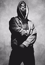 Tupac Shakur 2Pac Hip Hop Star Fabric Art Cloth Poster 20inch x 13inch Decor 08