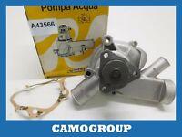 Water Pump Rhiag For VOLKSWAGEN Lt 28-35 40-55 Audi 100 WP321 PA233