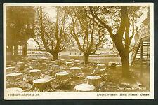"""Wiesbaden-Biebrich a. Rh.  Rhein-Terrassen """"Hotel Nassau"""" Garten"""