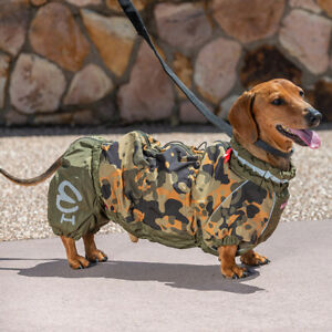 Tailored warm overall (jump suit) for Dachshunds - MALE
