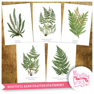 Botanical Fern Leaf Prints - A4 Vintage Reproduction Wall Art Set of 5 Ferns