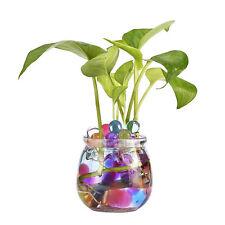 Wasserperlen 11 Beutel Dekoperlen Aquaperlen Blumendeko,mehrfarbig Neu