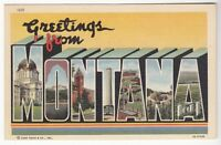 [53077] OLD LARGE LETTER POSTCARD GREETINGS FROM MONTANA