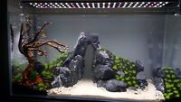 5 kg NATURAL DARK GREY STONE FOR AN AQUARIUM, AQUASCAPING ,IWAGUMI STYLE, MALAWI
